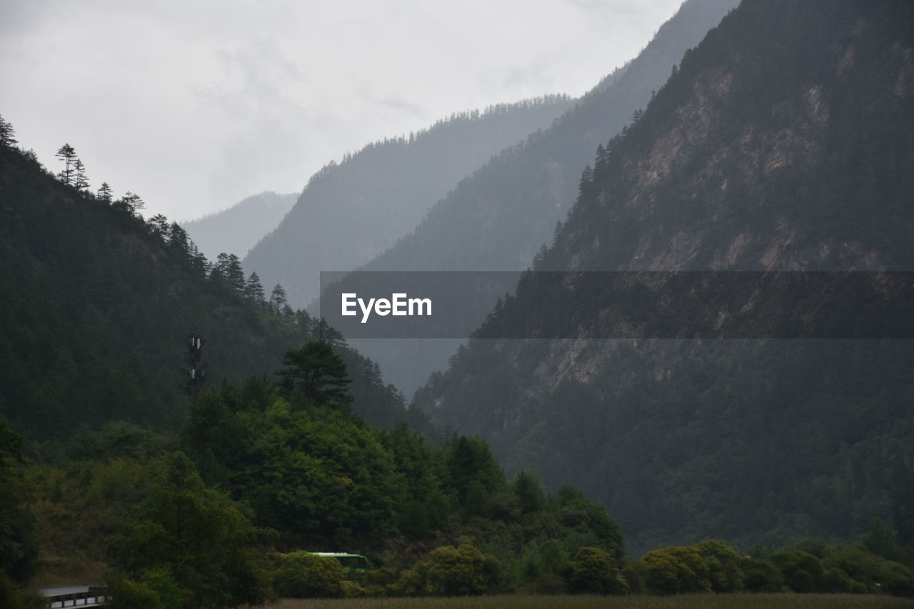 mountain, nature, beauty in nature, mountain range, tree, day, outdoors, forest, fog, scenics, sky, landscape, no people, water