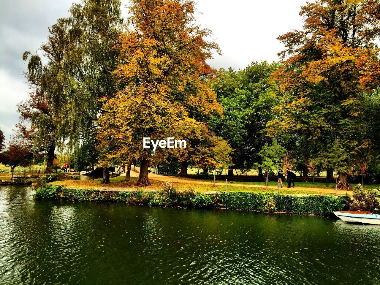 tree, autumn, water, change, nature, beauty in nature, lake, scenics, day, growth, outdoors, incidental people, leaf, waterfront, tranquility, tranquil scene, large group of people, travel destinations, sky, real people, people