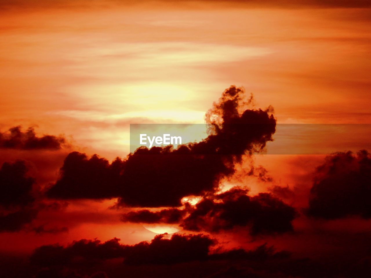 sunset, nature, beauty in nature, scenics, sky, silhouette, dramatic sky, tranquil scene, tranquility, cloud - sky, atmospheric mood, no people, idyllic, outdoors, low angle view, sky only, backgrounds, tree, day