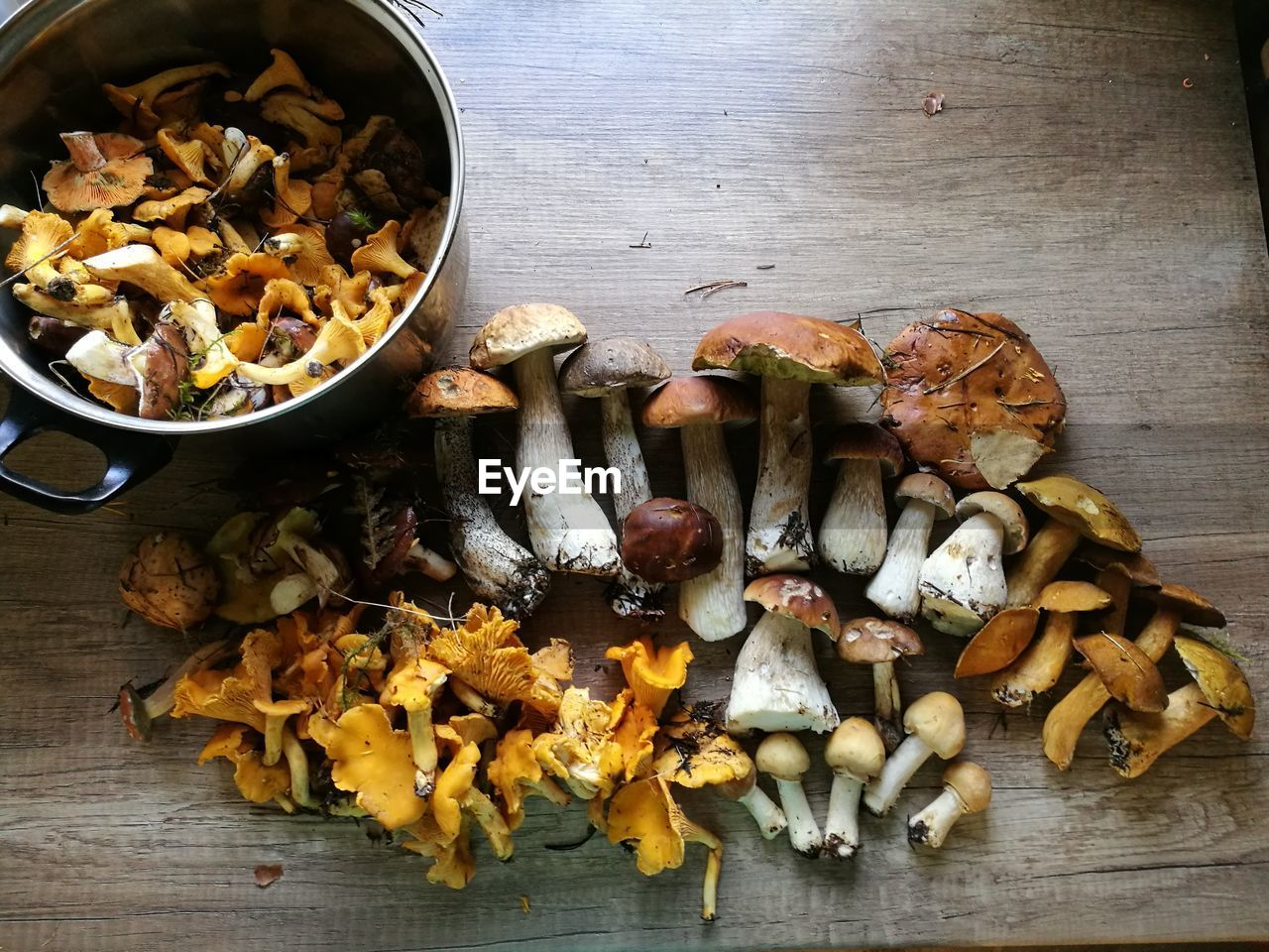 food and drink, food, freshness, wellbeing, healthy eating, vegetable, table, indoors, high angle view, still life, no people, directly above, wood - material, ready-to-eat, close-up, bowl, serving size, mushroom, large group of objects, abundance, chopped
