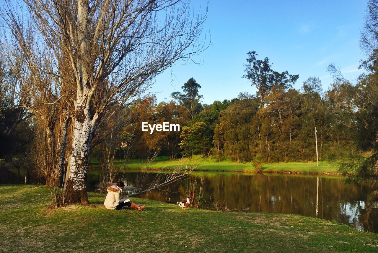 Woman Sitting By Tree At Lakeshore In Public Park