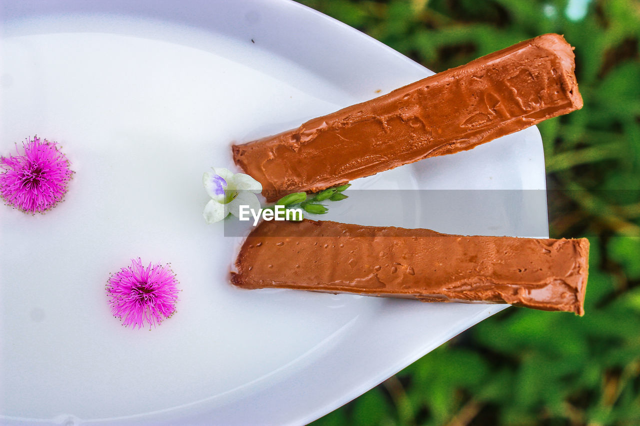 HIGH ANGLE VIEW OF ICE CREAM IN PLATE AGAINST WHITE BACKGROUND
