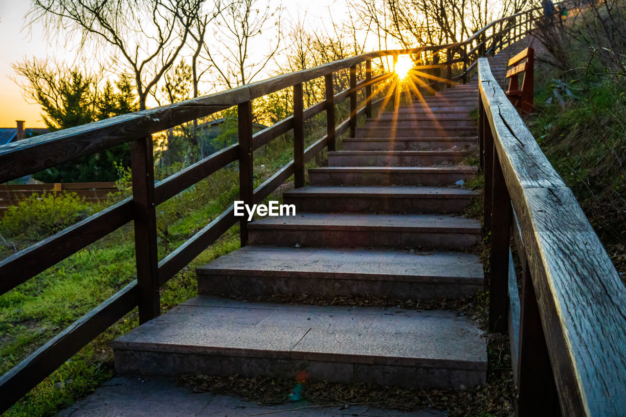 direction, the way forward, tree, railing, architecture, plant, staircase, no people, nature, wood - material, built structure, steps and staircases, connection, footpath, empty, sunset, outdoors, tranquility, land, day, footbridge