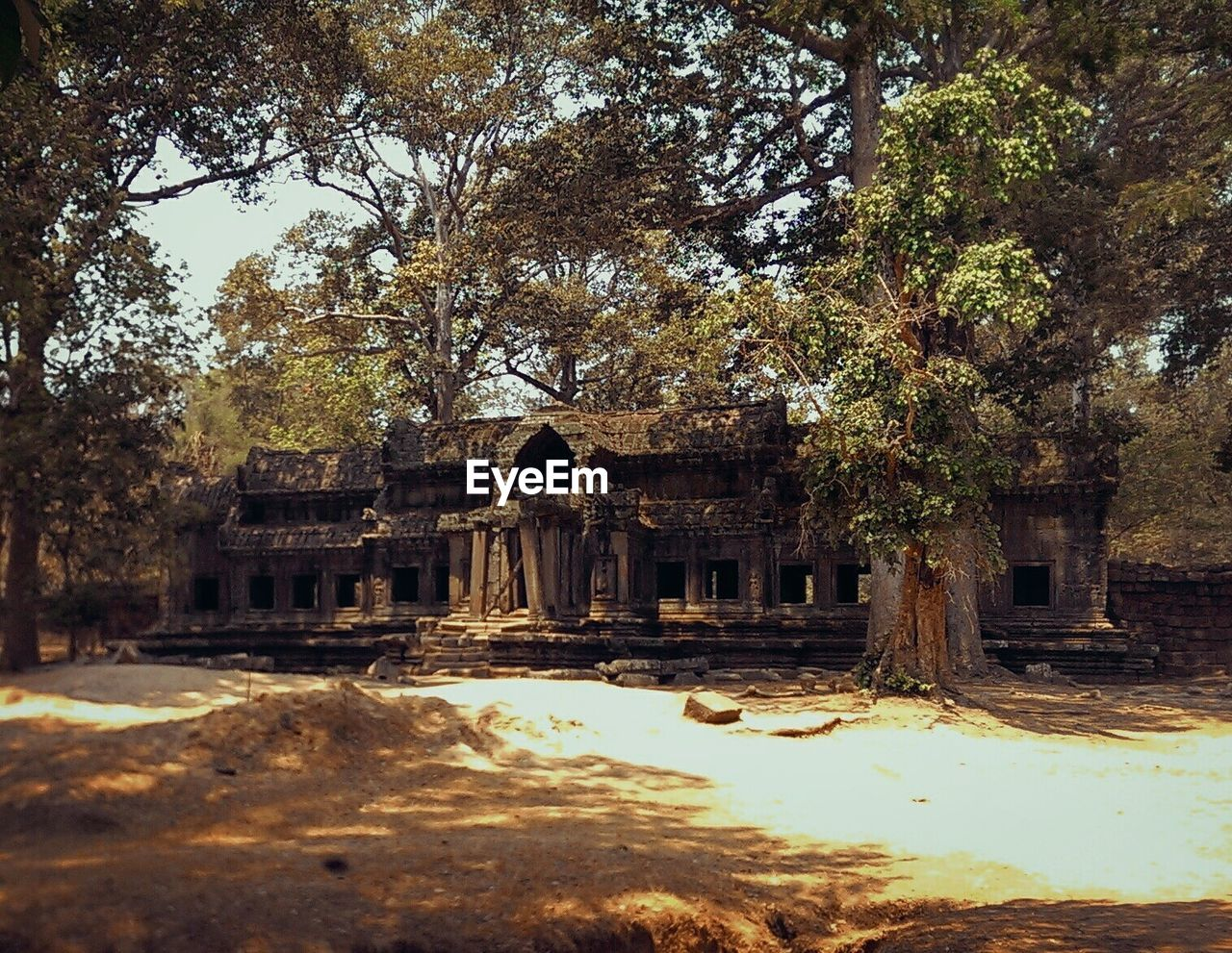 architecture, old ruin, built structure, abandoned, ancient civilization, building exterior, ancient, history, tree, place of worship, day, no people, outdoors