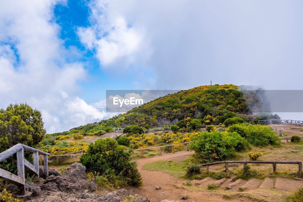 sky, cloud - sky, beauty in nature, nature, plant, scenics - nature, tree, day, tranquil scene, mountain, tranquility, non-urban scene, environment, no people, land, landscape, architecture, built structure, railing, travel, outdoors, ancient civilization