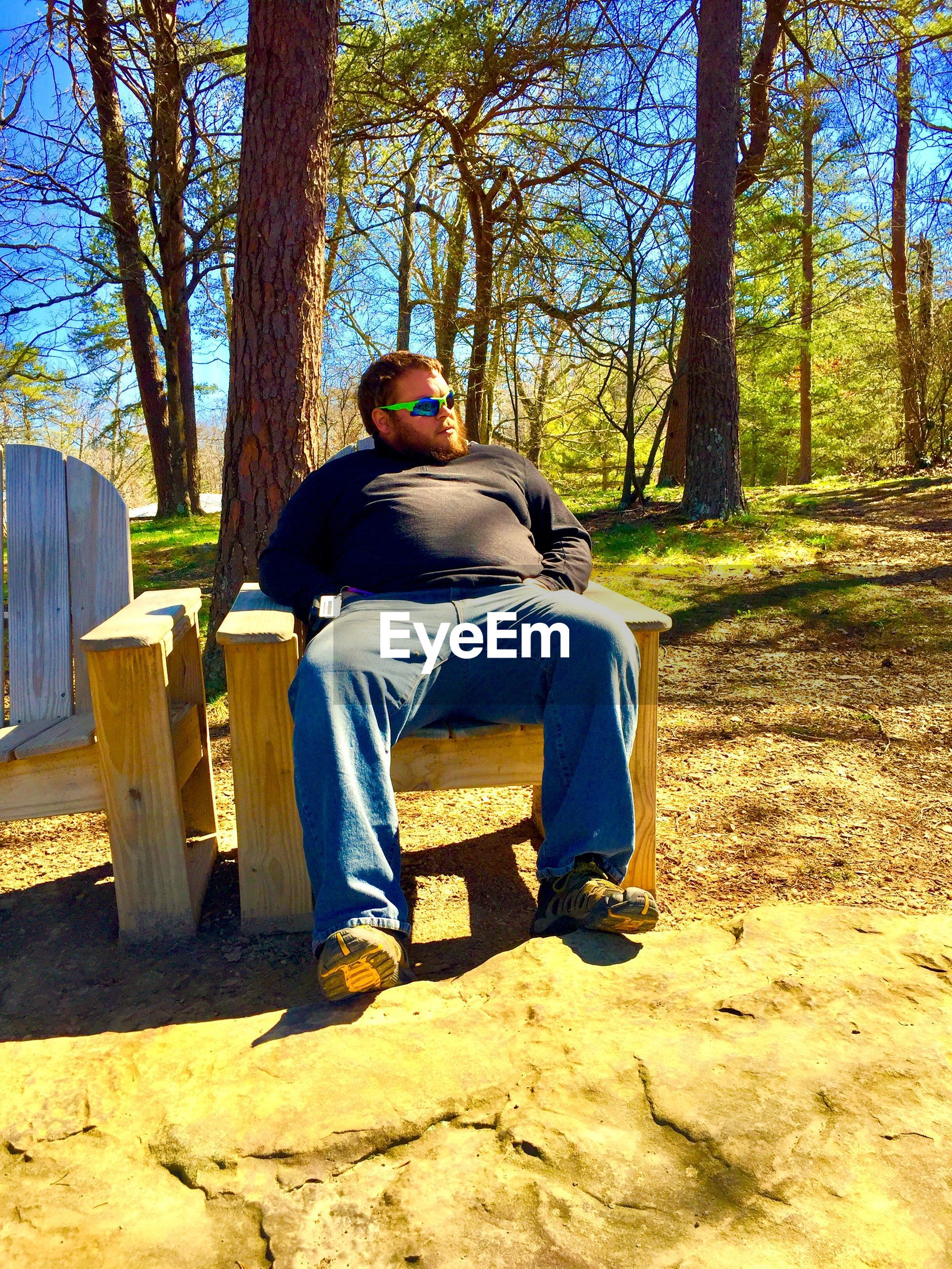 Man sitting on bench against trees