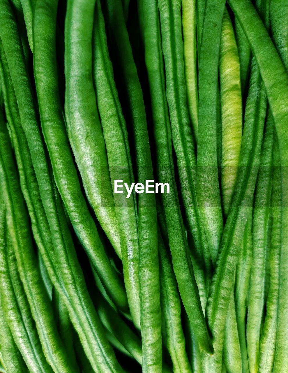 Full frame shot of vegetables best beans green supper market sale on bean collection