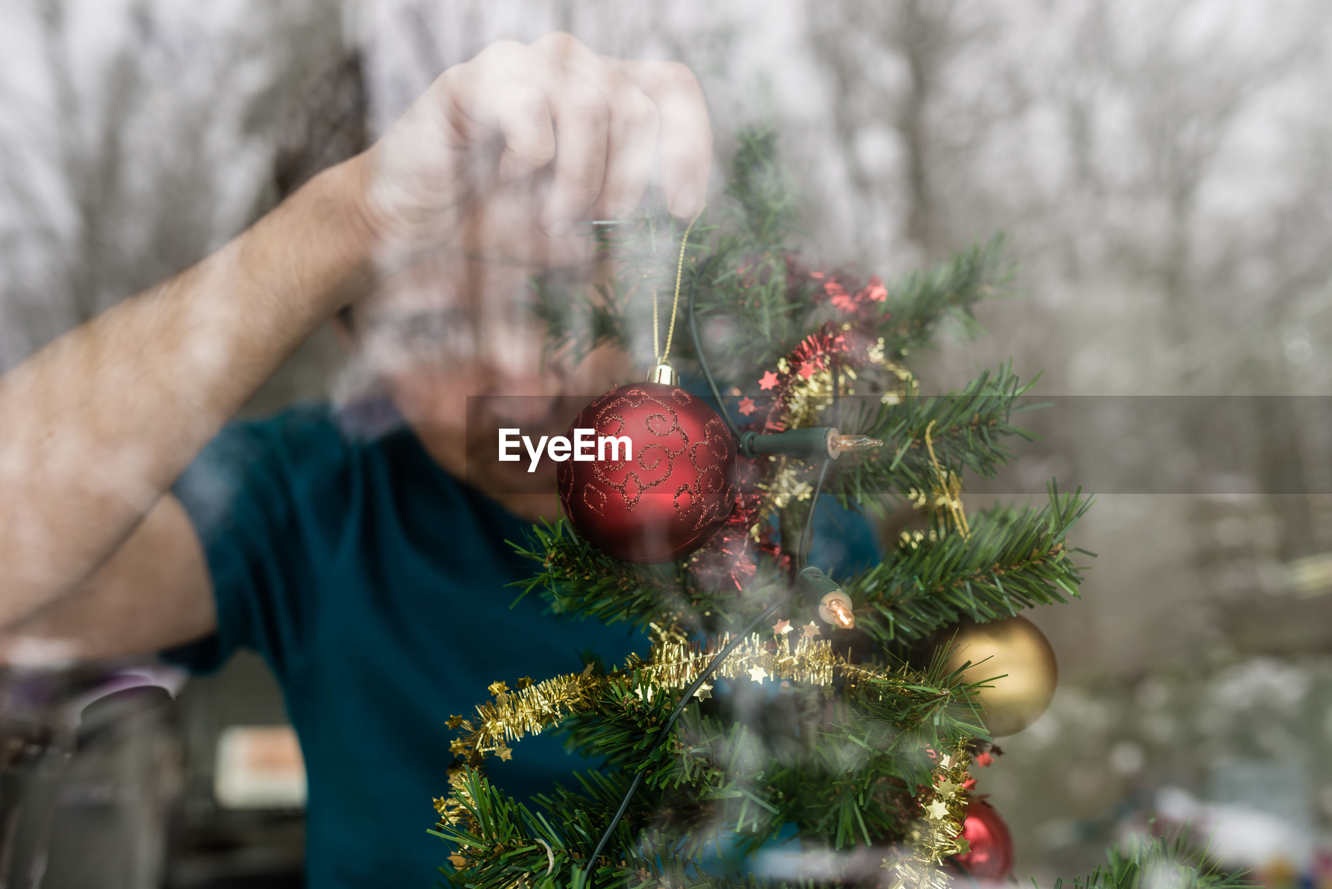 PERSON HOLDING CHRISTMAS TREE