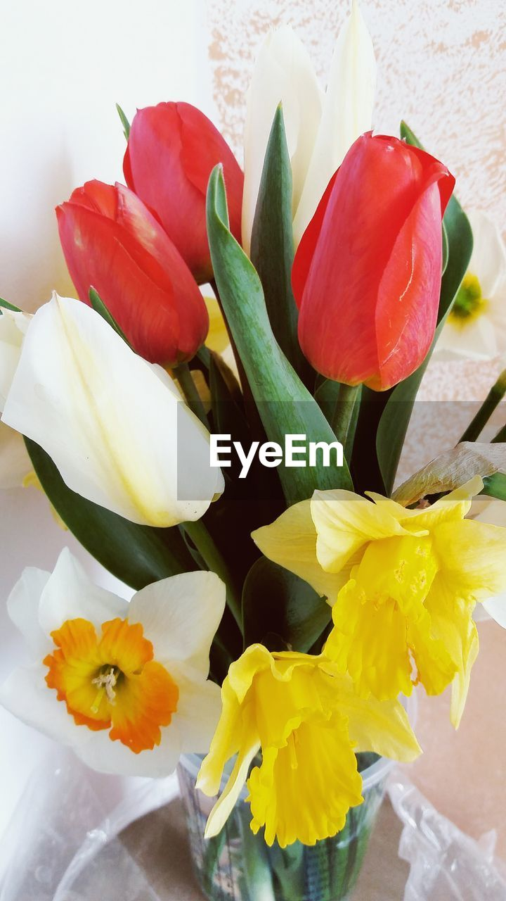 flower, petal, fragility, freshness, flower head, beauty in nature, yellow, bouquet, nature, no people, close-up, vase, tulip, leaf, indoors, day