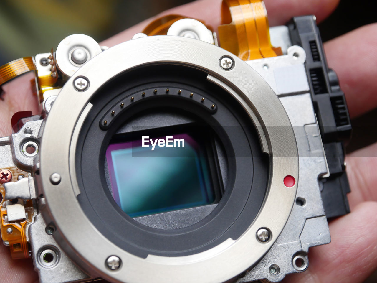 technology, camera - photographic equipment, photography themes, close-up, human hand, human body part, equipment, photographic equipment, hand, holding, people, digital camera, camera, body part, lens - eye, lens - optical instrument, personal perspective, focus on foreground, activity, man made, electrical equipment, slr camera, alloy, photographer