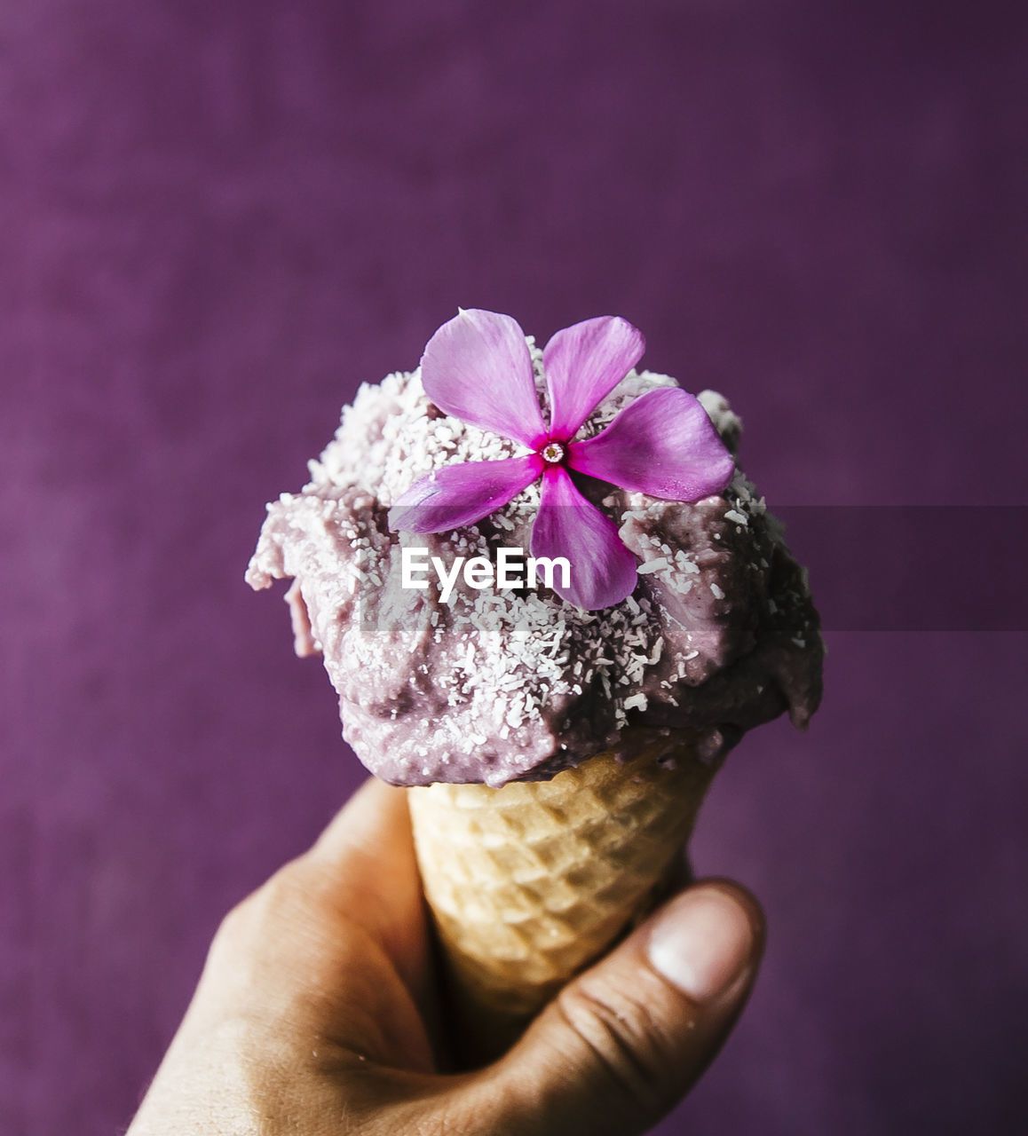 freshness, human hand, holding, flowering plant, hand, flower, human body part, ice cream, plant, ice cream cone, sweet food, frozen, one person, close-up, sweet, cone, pink color, food, focus on foreground, dairy product, temptation, purple, flower head, finger