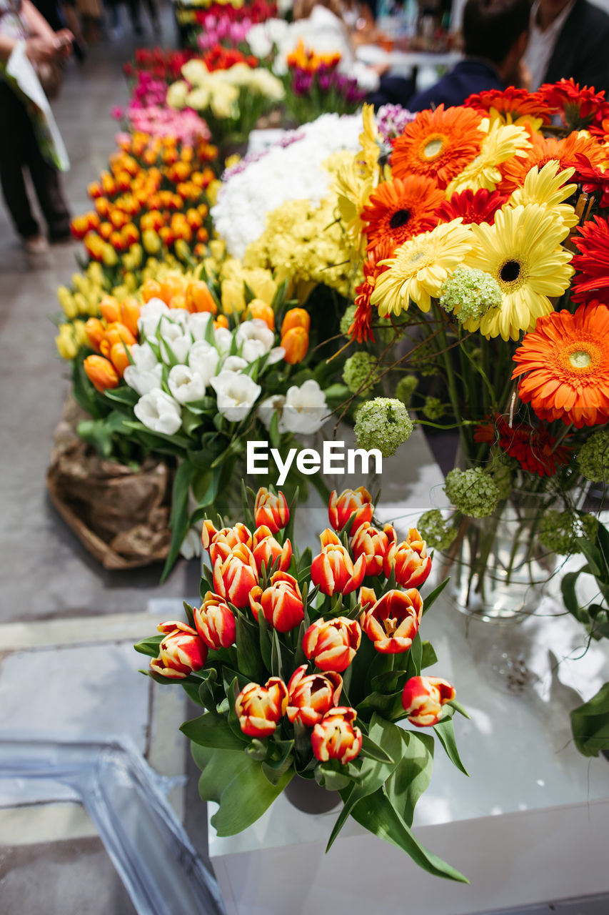 A variety of fresh flowers at the flower fair.