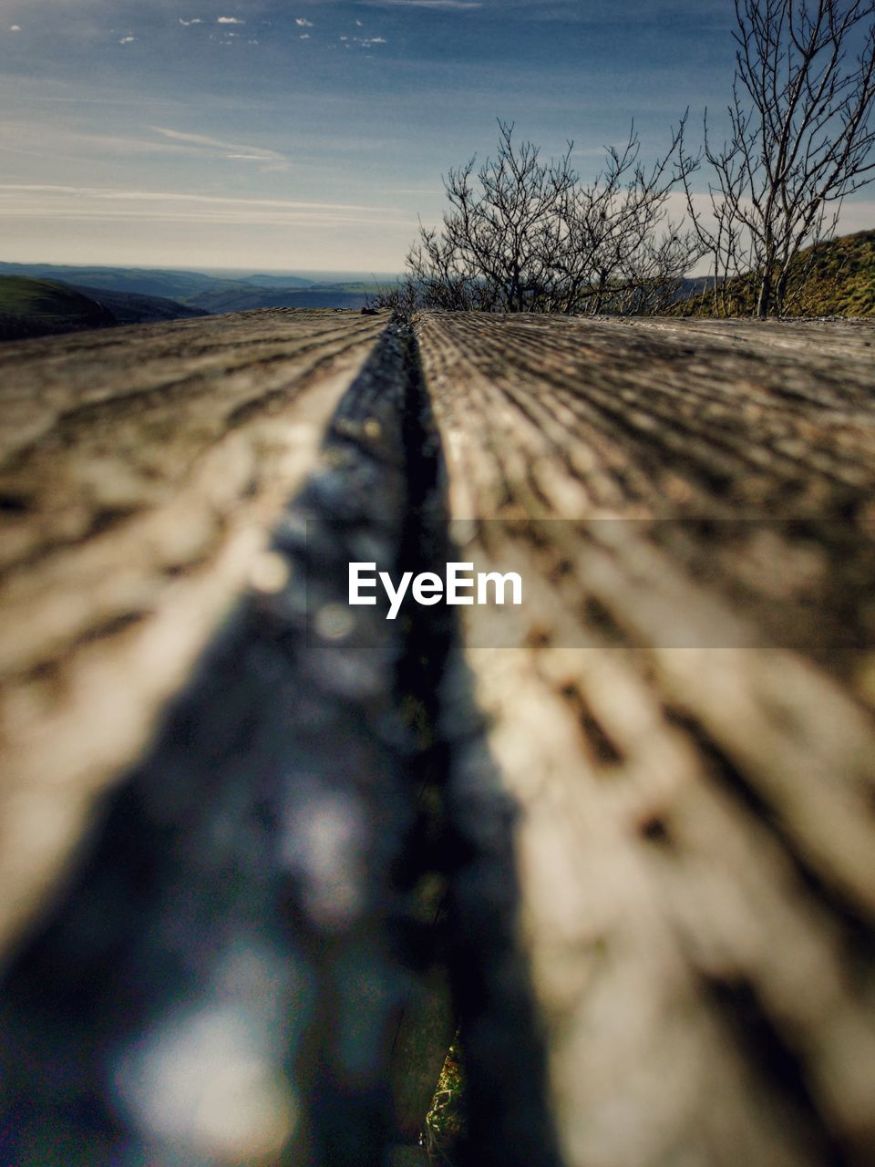 selective focus, sky, transportation, nature, no people, the way forward, surface level, track, direction, diminishing perspective, railroad track, day, rail transportation, tree, plant, outdoors, land, bare tree, tranquility, landscape