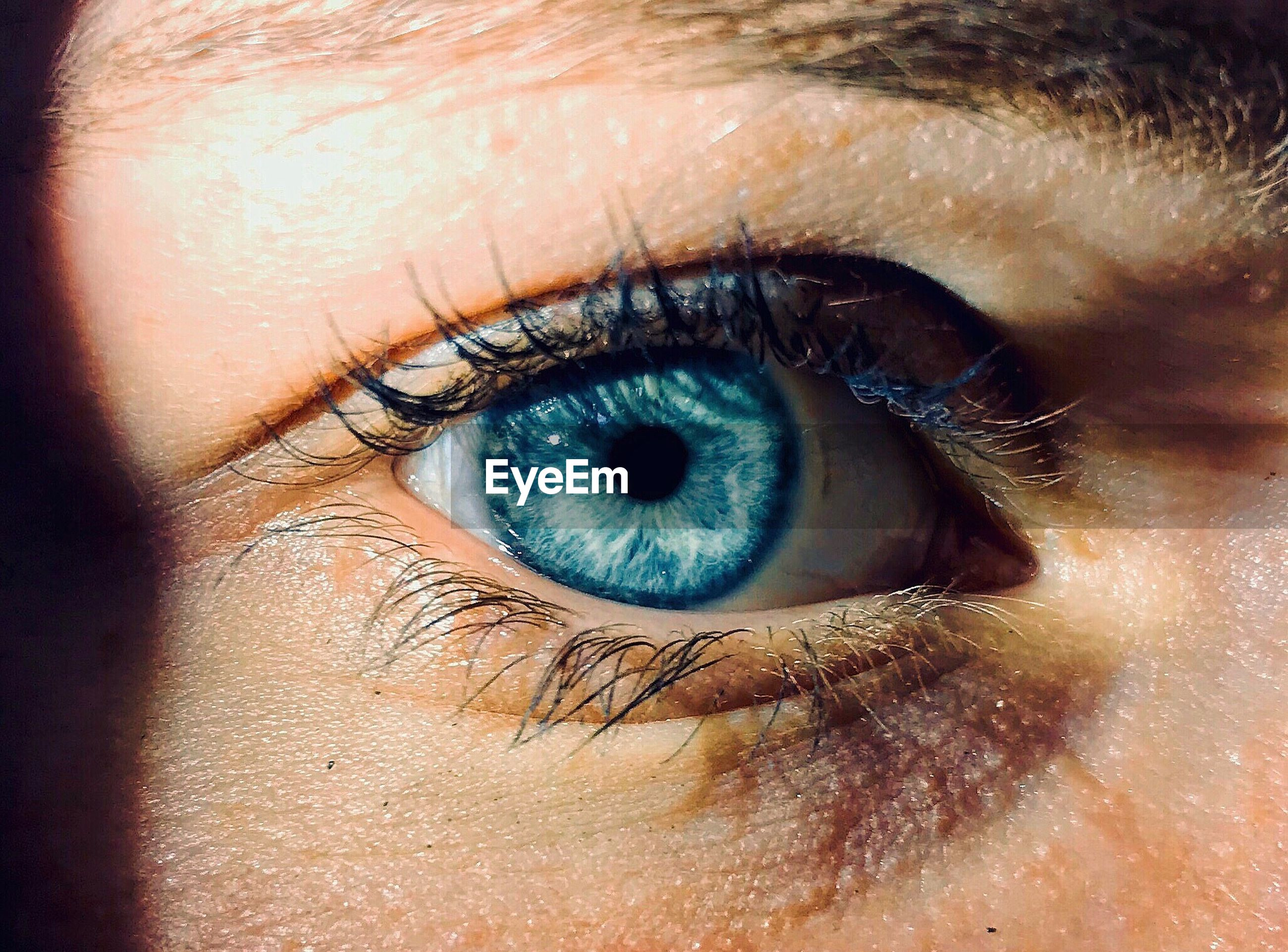Cropped image of woman with blue eye