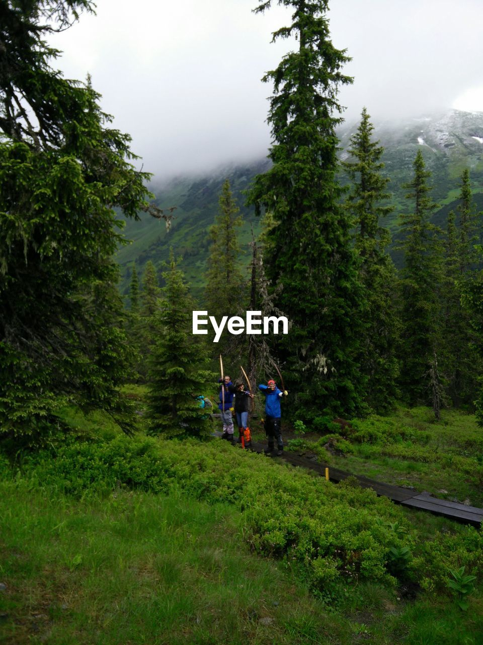 People With Archery Bows In Forest