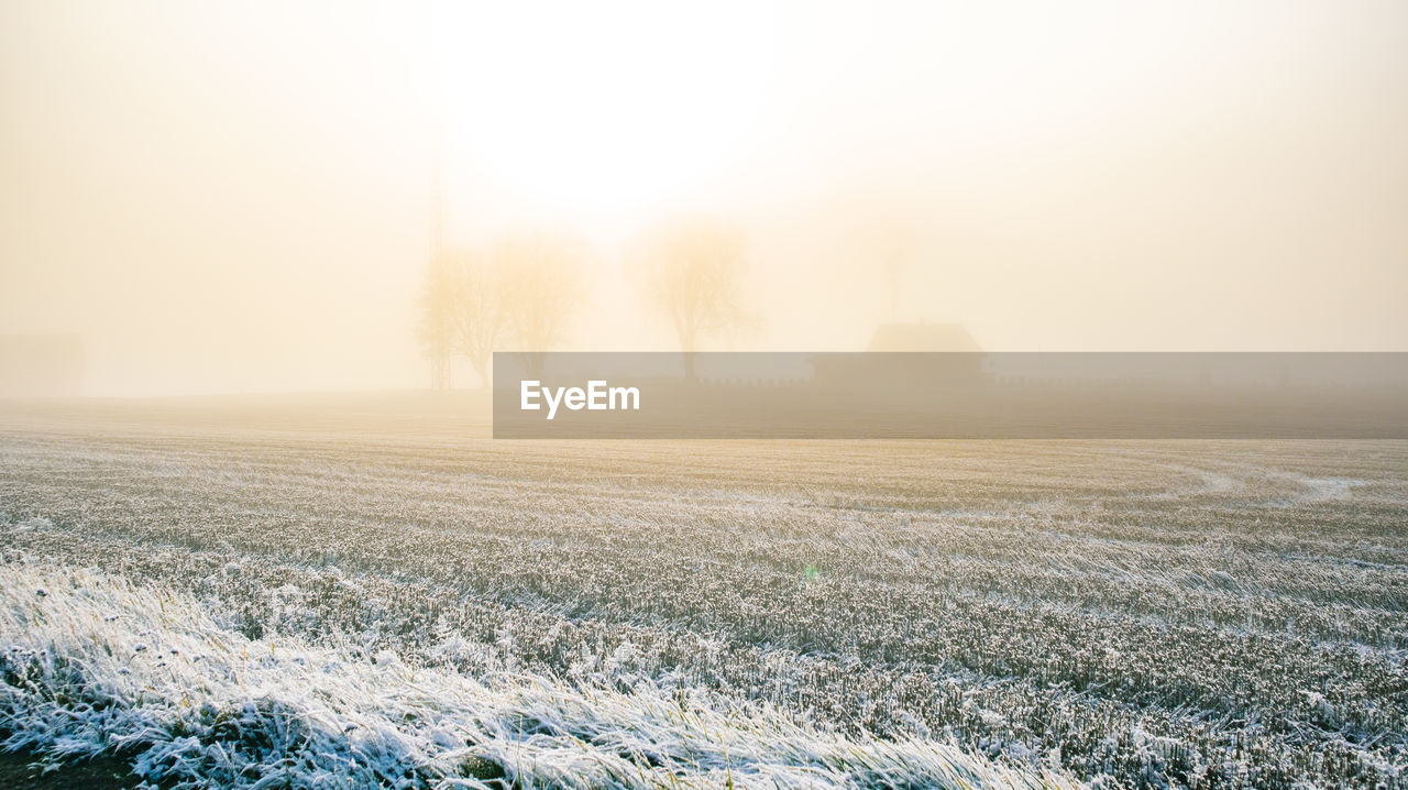 Scenic view of foggy field against sky at morning