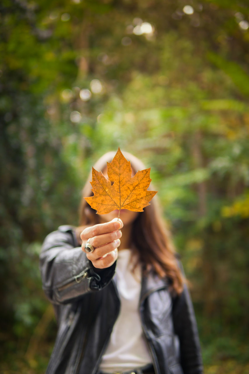 autumn, leaf, change, real people, focus on foreground, one person, nature, tree, outdoors, forest, day, rear view, holding, leisure activity, standing, beauty in nature, lifestyles, women, close-up, people