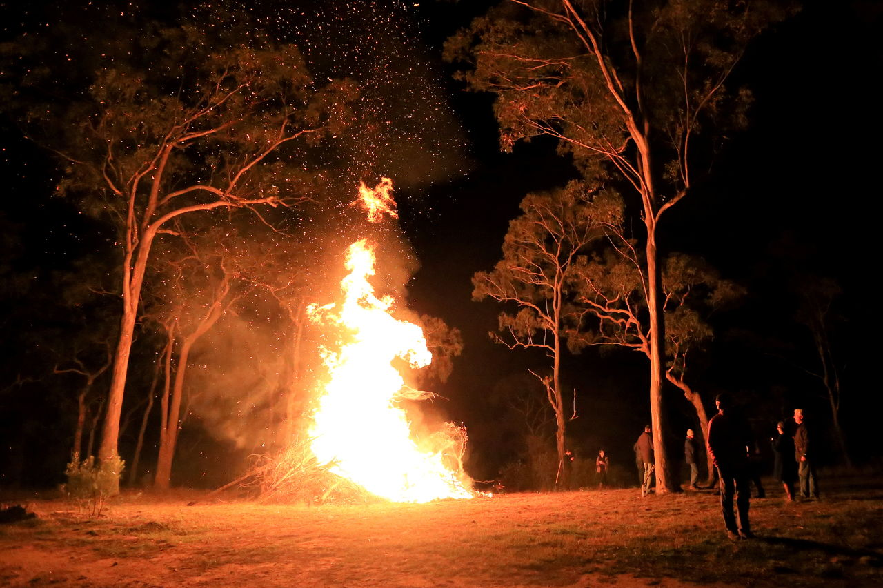 night, burning, heat - temperature, fire, fire - natural phenomenon, flame, tree, motion, nature, land, glowing, group of people, men, real people, forest, outdoors, orange color, plant, illuminated, environment, bonfire