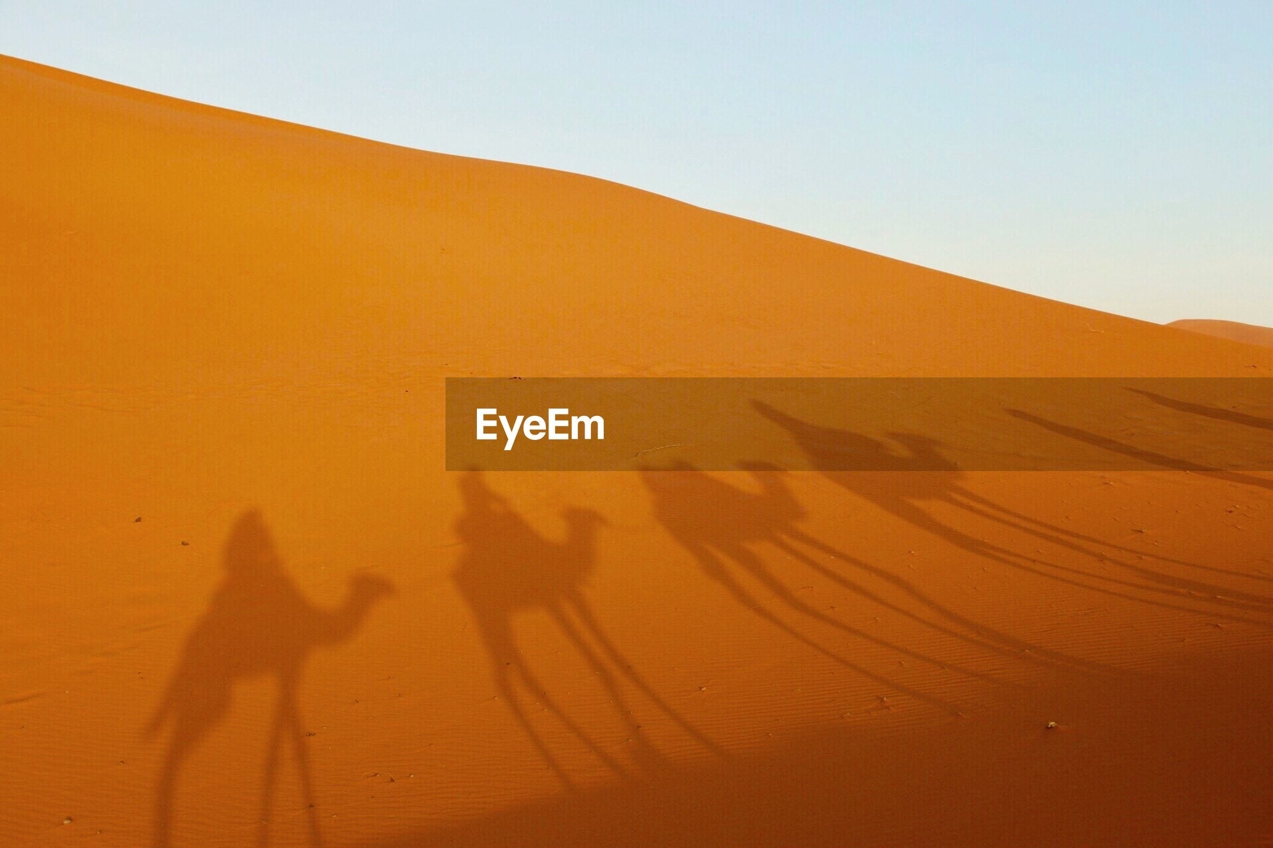 Shadow of people on camel at sand dune in desert against clear sky