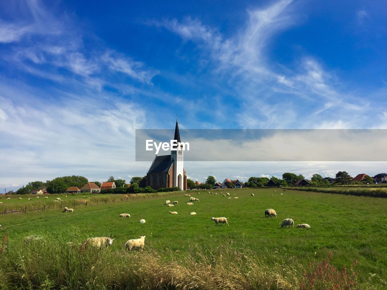 grass, built structure, architecture, sky, field, landscape, cloud - sky, no people, day, building exterior, tree, nature, scenics, beauty in nature, outdoors, animal themes, windmill, mammal