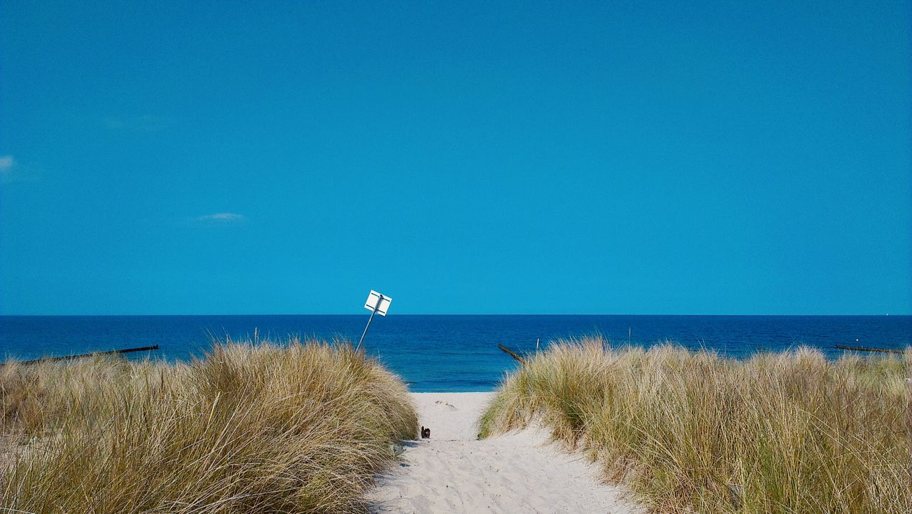 water, sea, horizon over water, horizon, sky, beach, scenics - nature, beauty in nature, grass, tranquility, tranquil scene, nature, land, plant, day, blue, copy space, no people, sand, outdoors, marram grass