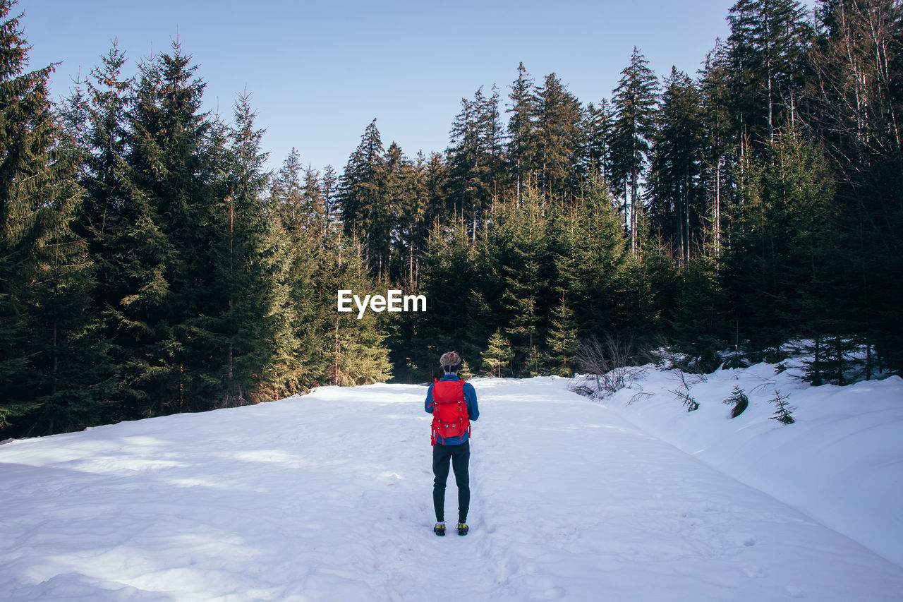 Rear view of person walking on snow covered field