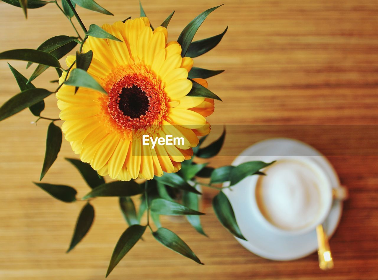 Directly Above Shot Of Gerbera Daisy In Vase By Coffee On Table
