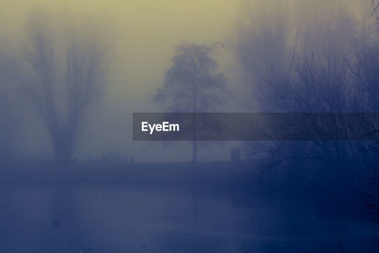 fog, mist, nature, hazy, beauty in nature, tranquility, tree, tranquil scene, foggy, scenics, bare tree, no people, landscape, outdoors, branch, winter, water, day, sky