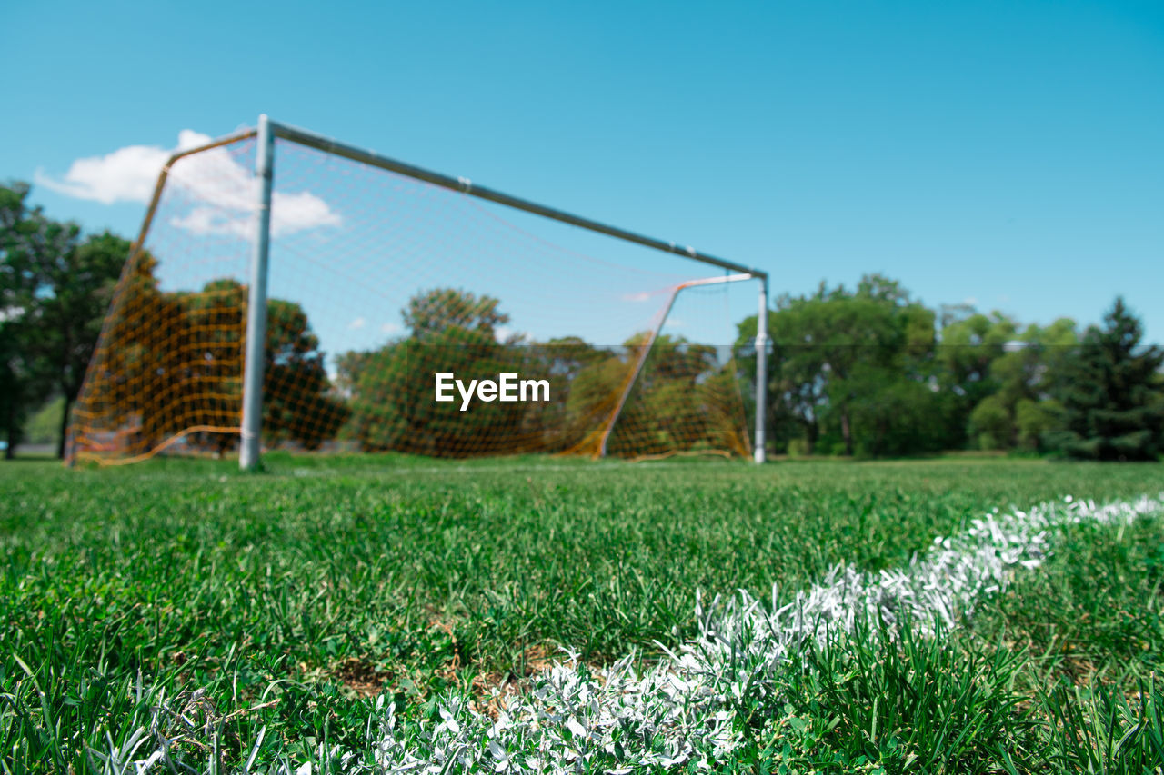 grass, plant, sport, sky, field, land, soccer, team sport, green color, soccer goal, nature, day, tree, soccer field, football, playing field, sports equipment, growth, clear sky, goal post, no people, outdoors