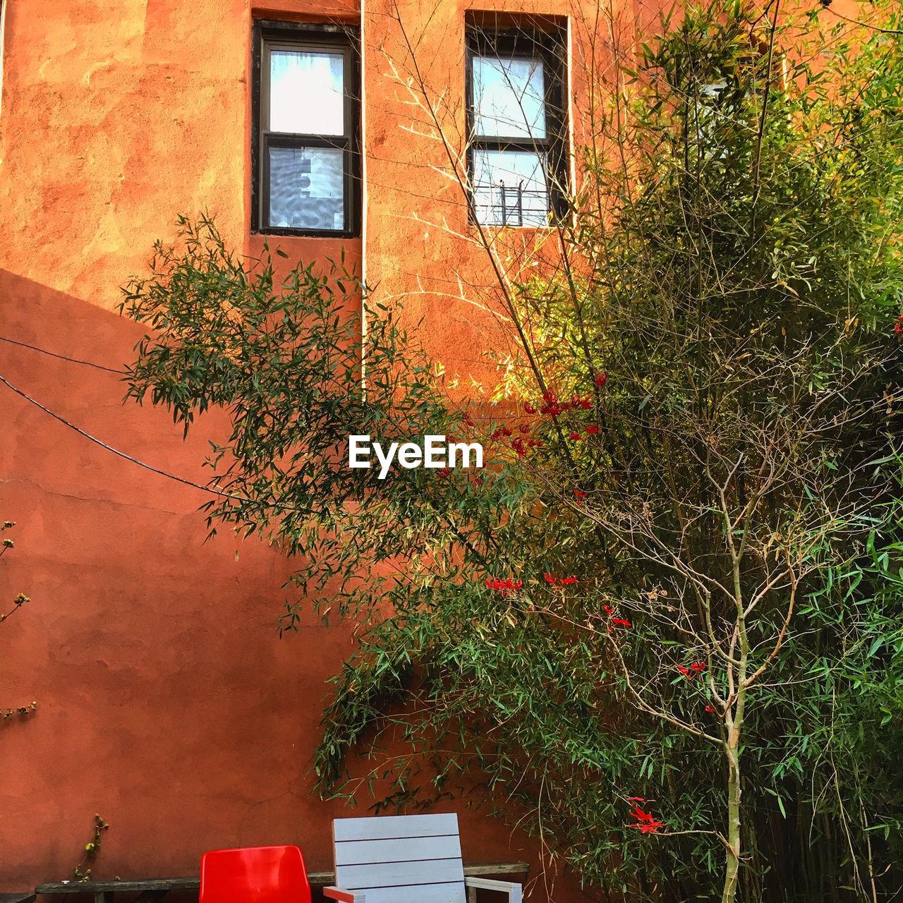 Green Plant Against Orange House