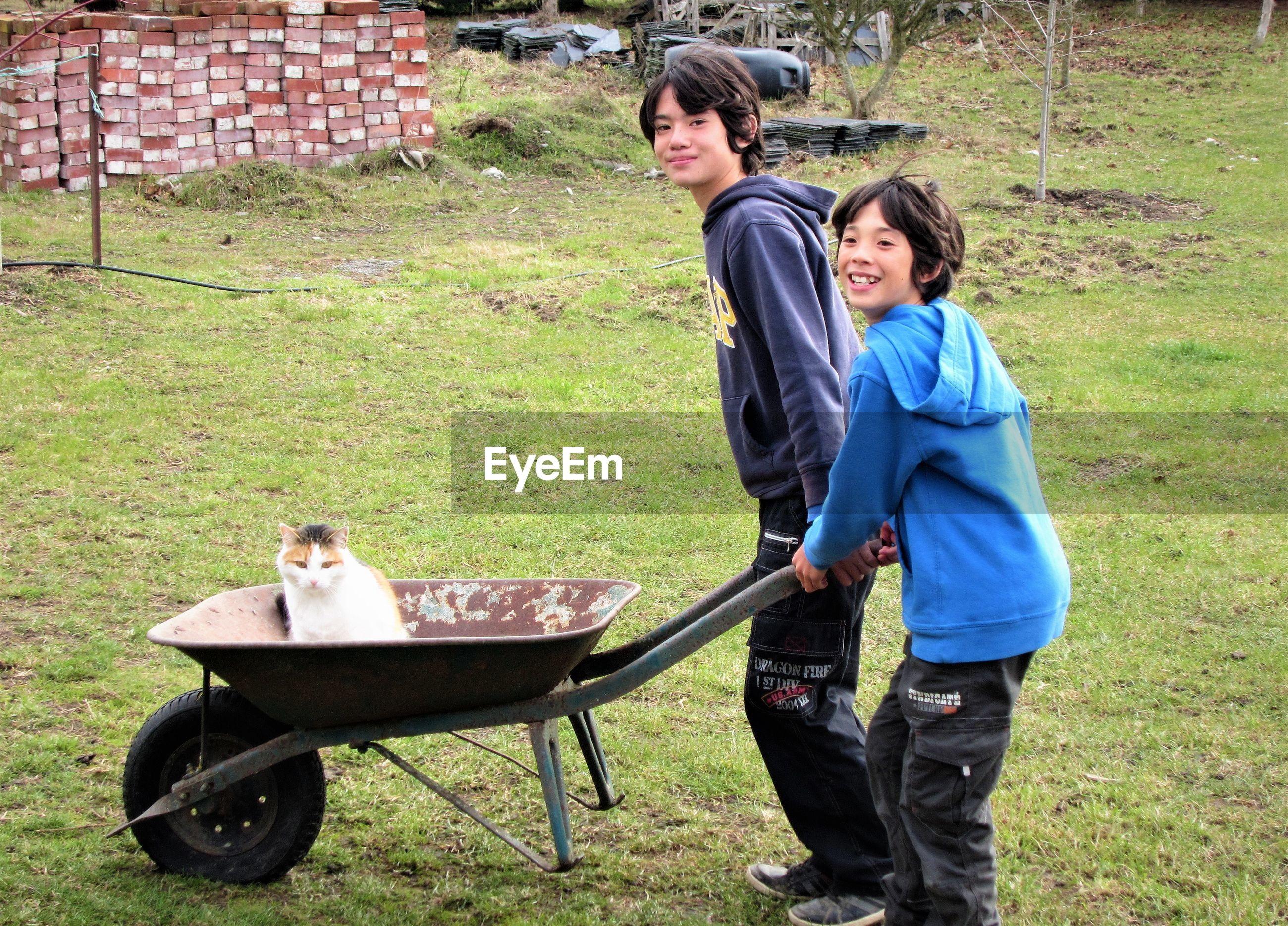 Boy holding wheelbarrow with cat while standing by brother on field
