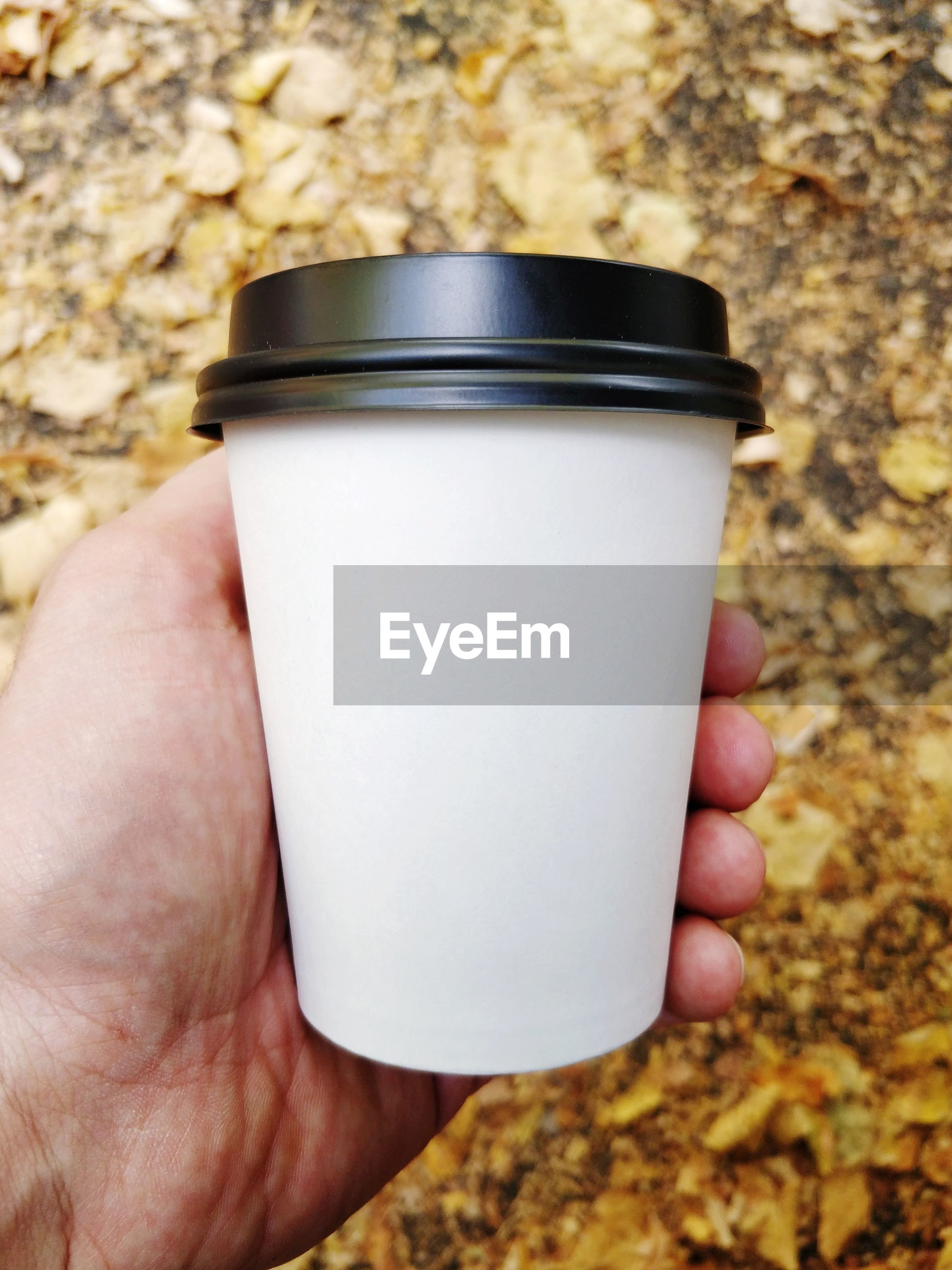 Close-up of hand holding disposable coffee cup