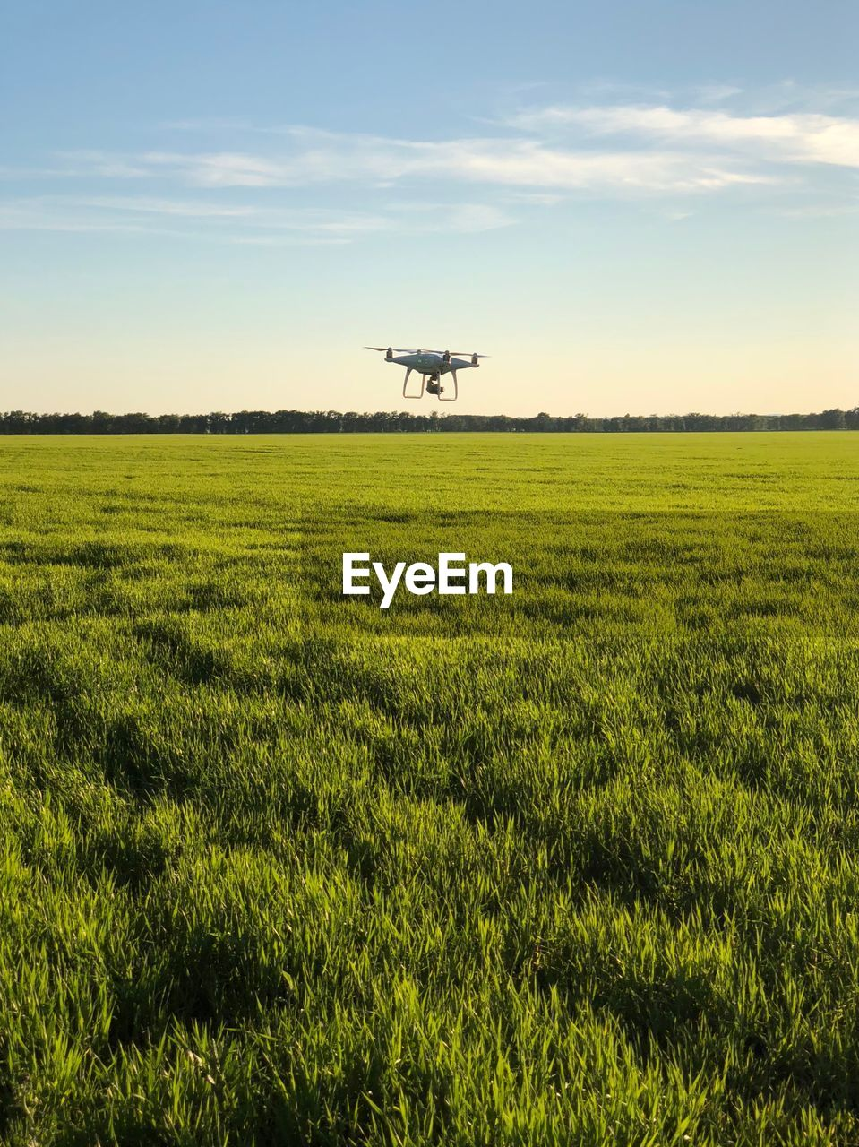 sky, field, plant, land, landscape, air vehicle, environment, green color, mode of transportation, growth, nature, airplane, agriculture, transportation, scenics - nature, rural scene, beauty in nature, flying, tranquil scene, farm, no people, outdoors