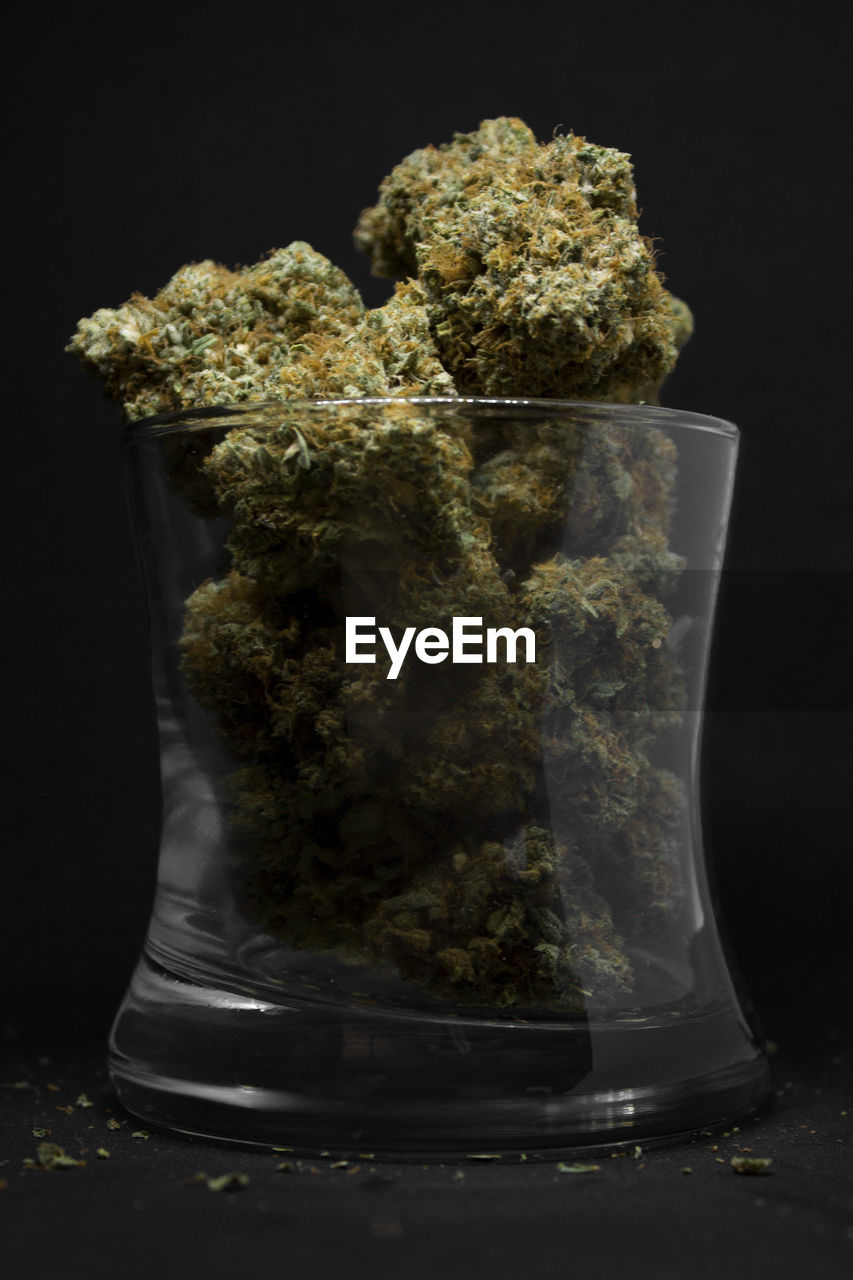 indoors, no people, close-up, studio shot, still life, transparent, black background, plant, container, food and drink, glass - material, nature, food, table, marijuana - herbal cannabis, focus on foreground, healthcare and medicine, cannabis plant, freshness