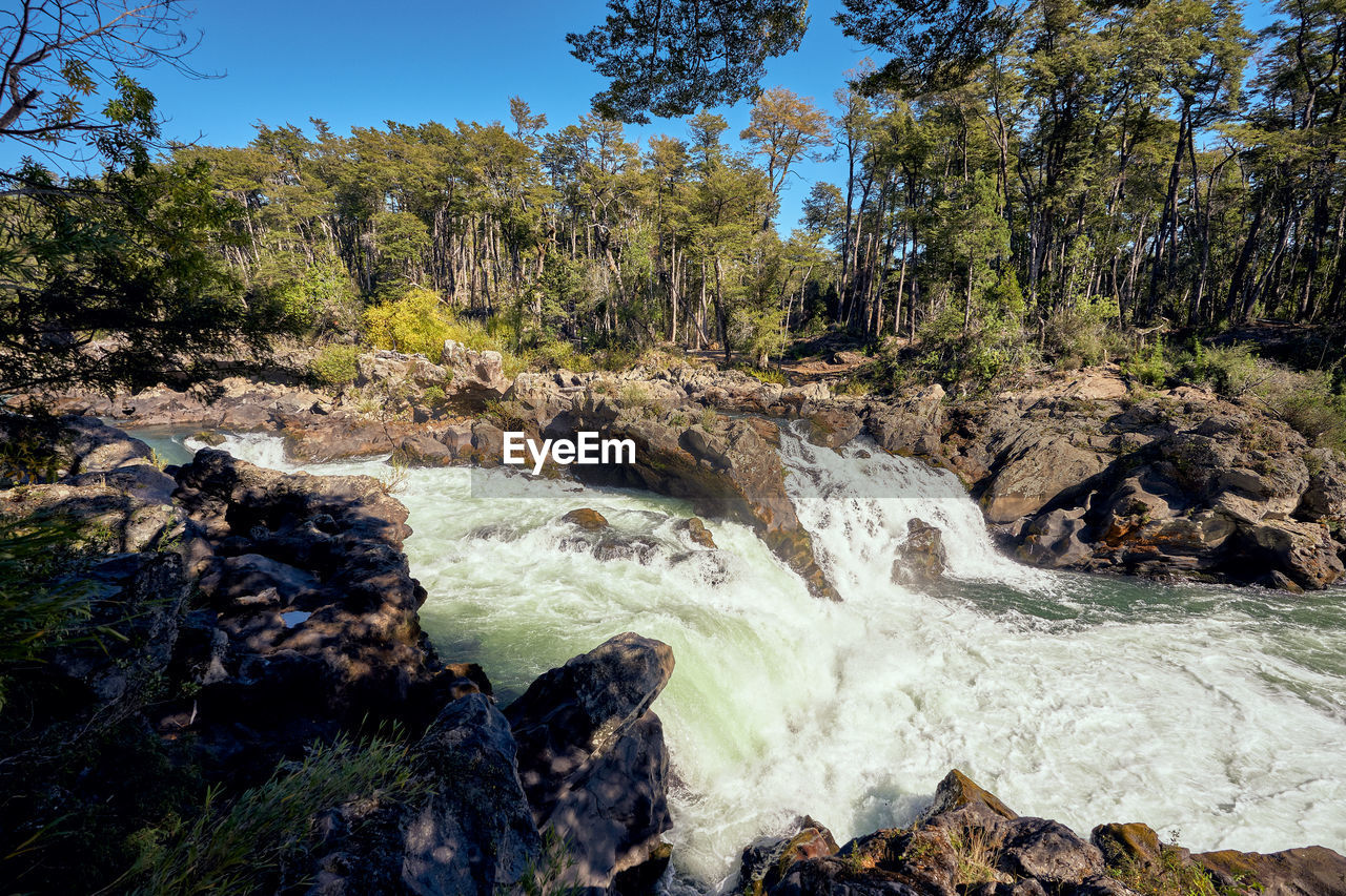 plant, tree, rock, beauty in nature, rock - object, scenics - nature, motion, water, solid, land, flowing water, nature, forest, no people, day, environment, blurred motion, waterfall, long exposure, flowing, outdoors, power in nature