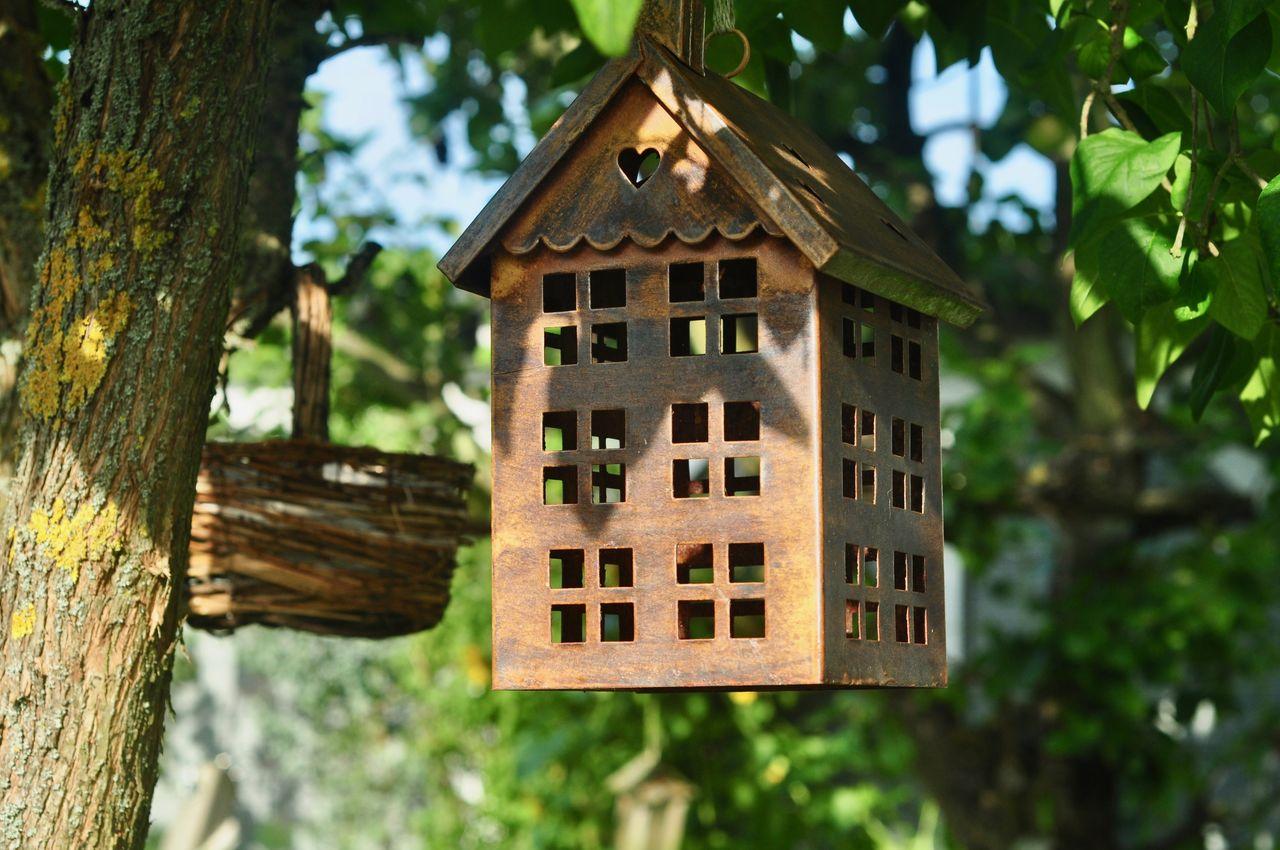 Birdhouse Handing On Tree