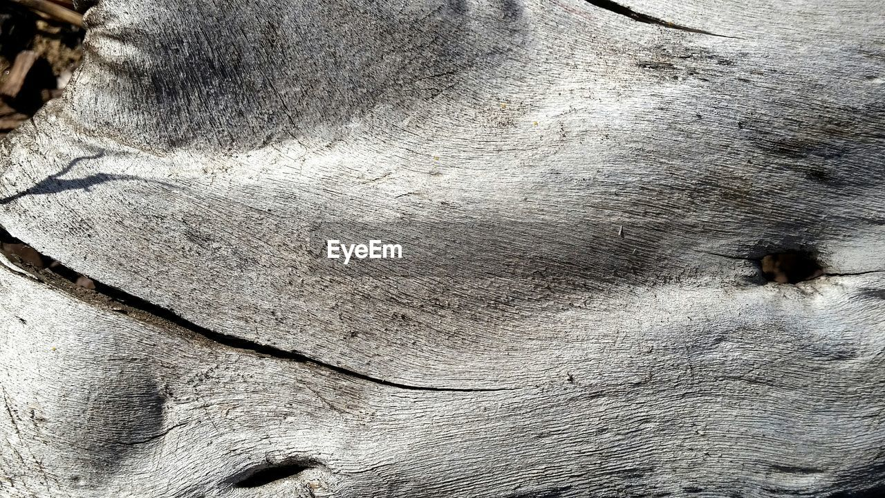 Detail shot of wooden surface