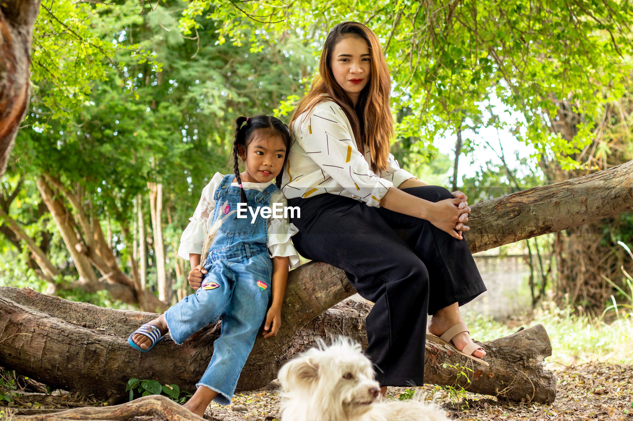 Full length portrait of smiling woman with girl sitting on tree by dog
