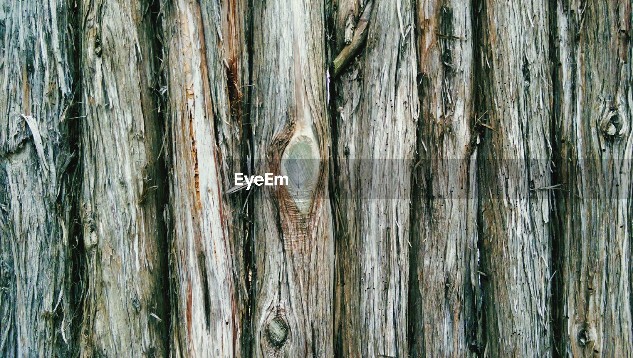 Detail shot of rough wood