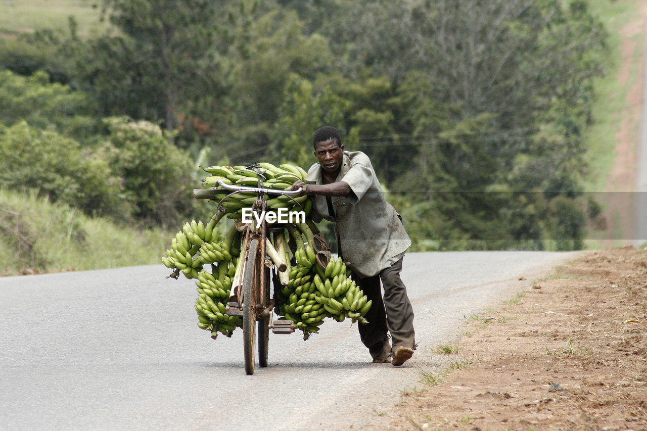 one man only, road, carrying, one person, full length, adults only, only men, outdoors, one young man only, rural scene, adult, tree, pride, basket, transportation, agriculture, front view, day, people, men, food, young adult, standing, healthy eating, smiling, freshness