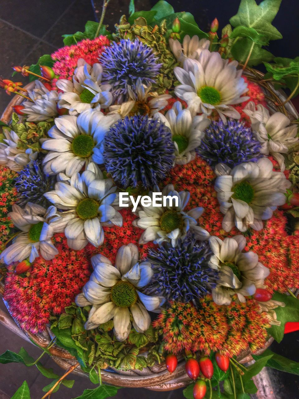 flower, fragility, multi colored, variation, flower head, freshness, nature, petal, no people, beauty in nature, choice, arrangement, growth, bouquet, day, close-up, blooming, outdoors