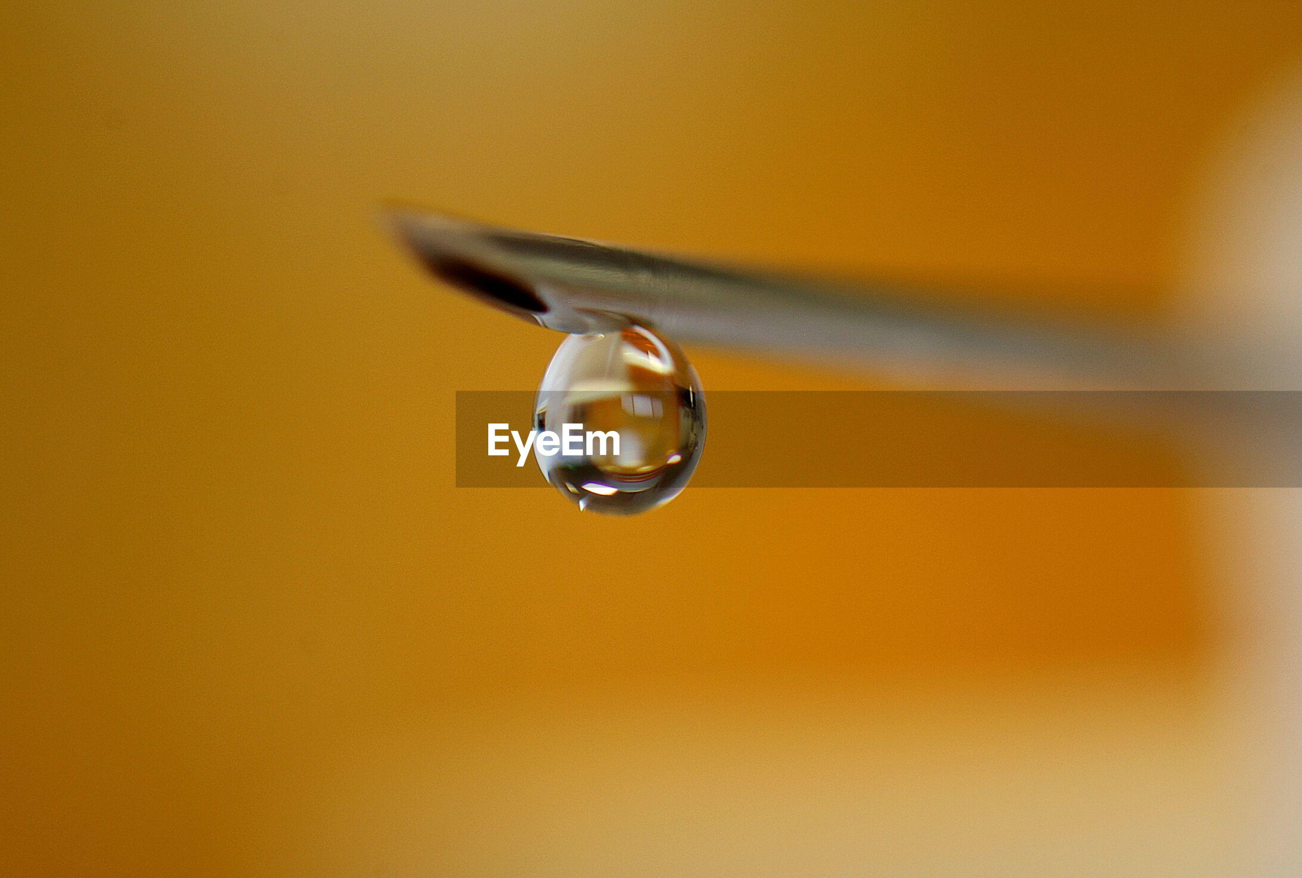 Extreme close-up of drop on syringe needle