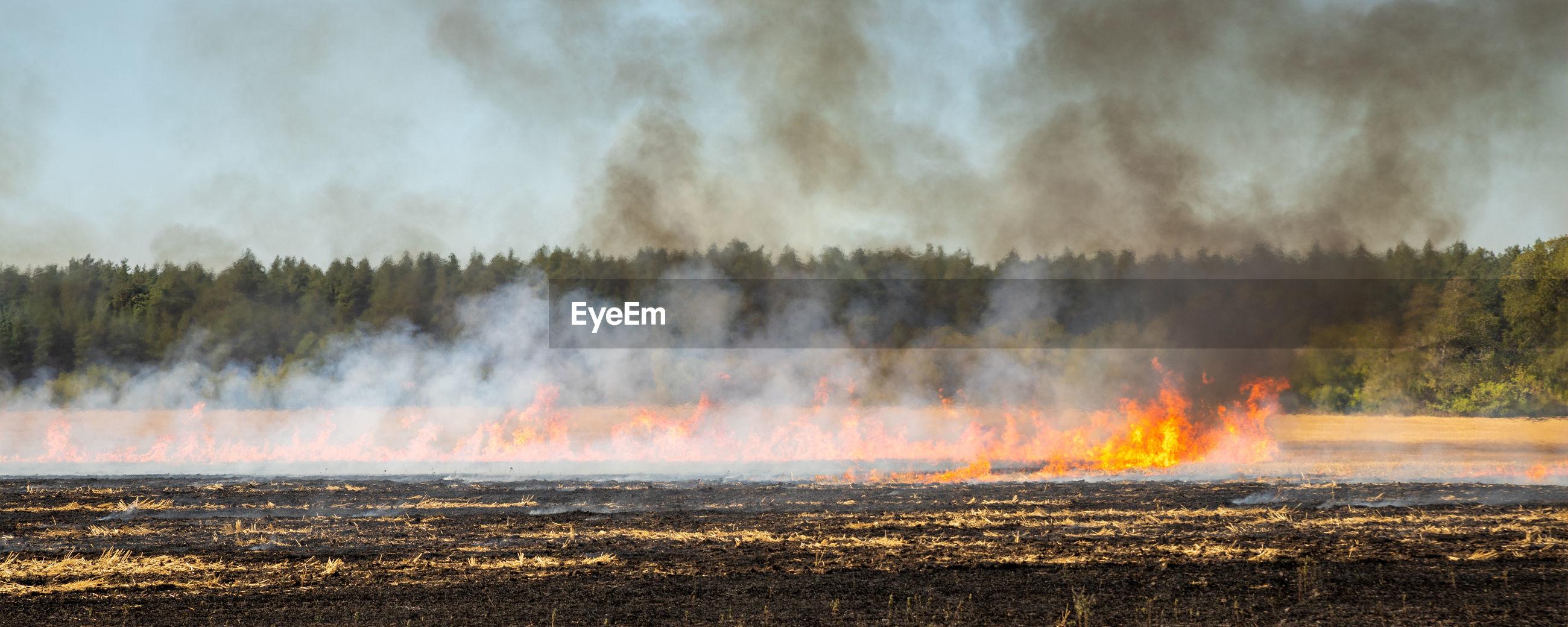 PANORAMIC SHOT OF BONFIRE ON FIELD