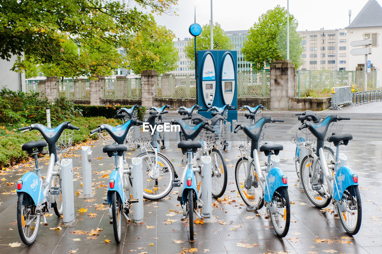 transportation, bicycle, mode of transportation, land vehicle, architecture, city, day, built structure, building exterior, tree, street, no people, stationary, bicycle rack, parking, nature, plant, outdoors, reflection