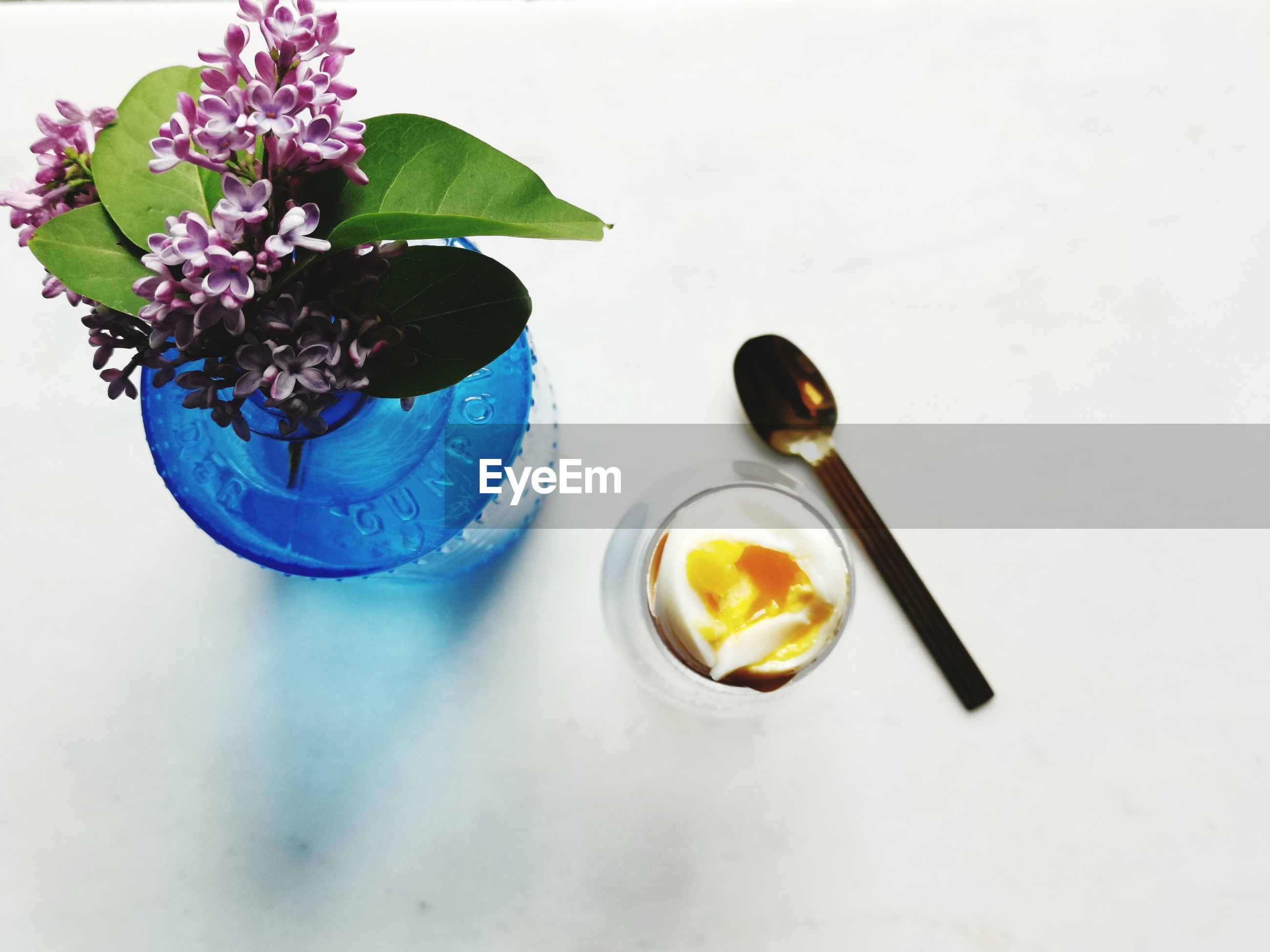 HIGH ANGLE VIEW OF POTTED PLANT ON WHITE TABLE