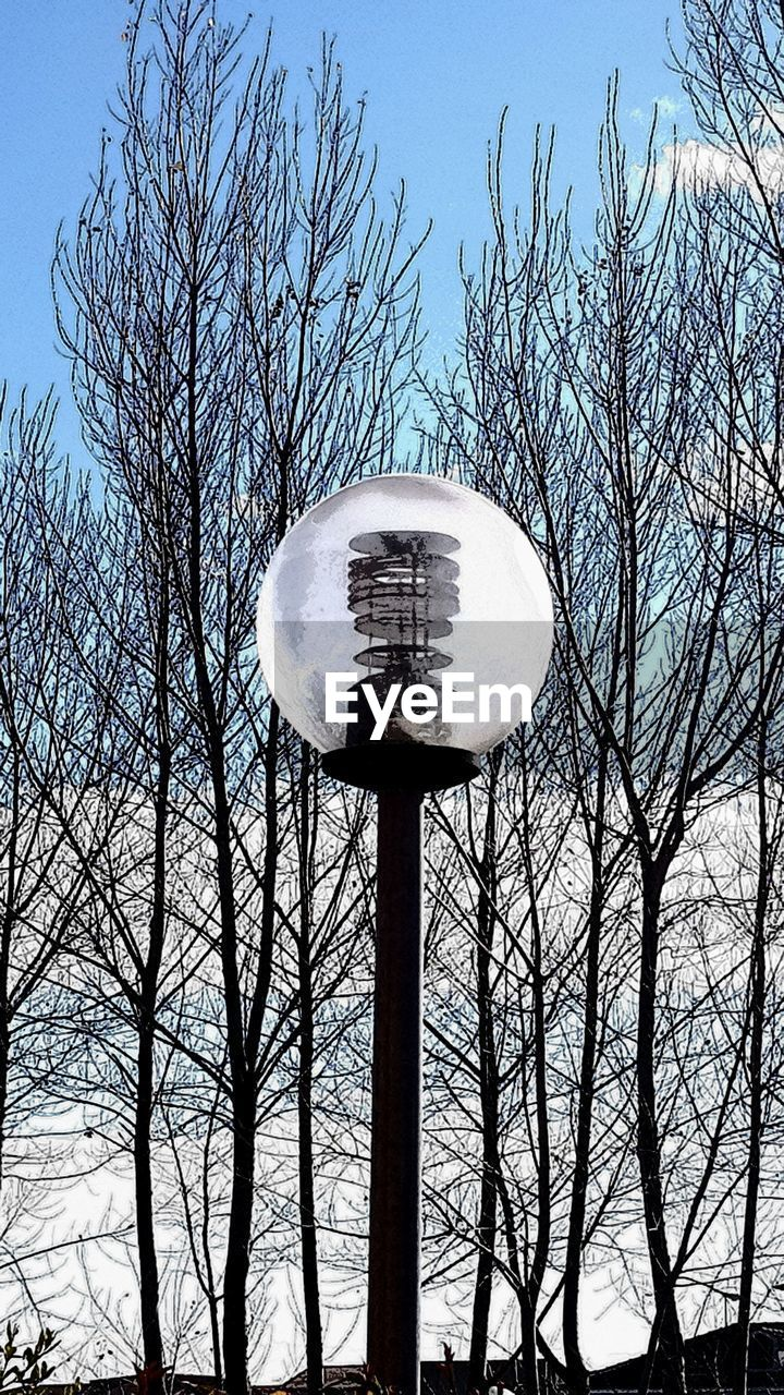 tree, bare tree, sky, branch, plant, low angle view, nature, no people, day, architecture, outdoors, built structure, sphere, blue, water tower - storage tank, trunk, sunlight, tree trunk, scenics - nature, clear sky, water conservation