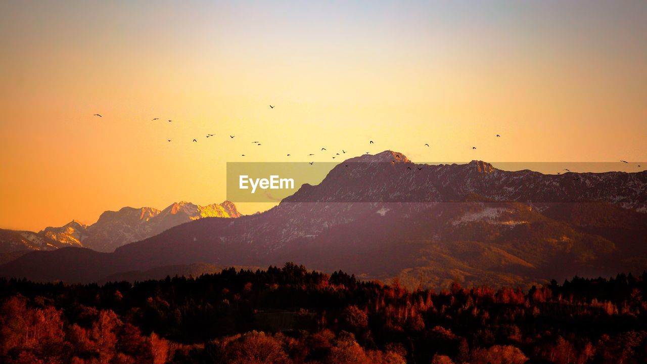 sky, mountain, sunset, beauty in nature, scenics - nature, tranquility, tranquil scene, environment, nature, mountain range, landscape, no people, orange color, idyllic, non-urban scene, silhouette, animal, vertebrate, outdoors, bird