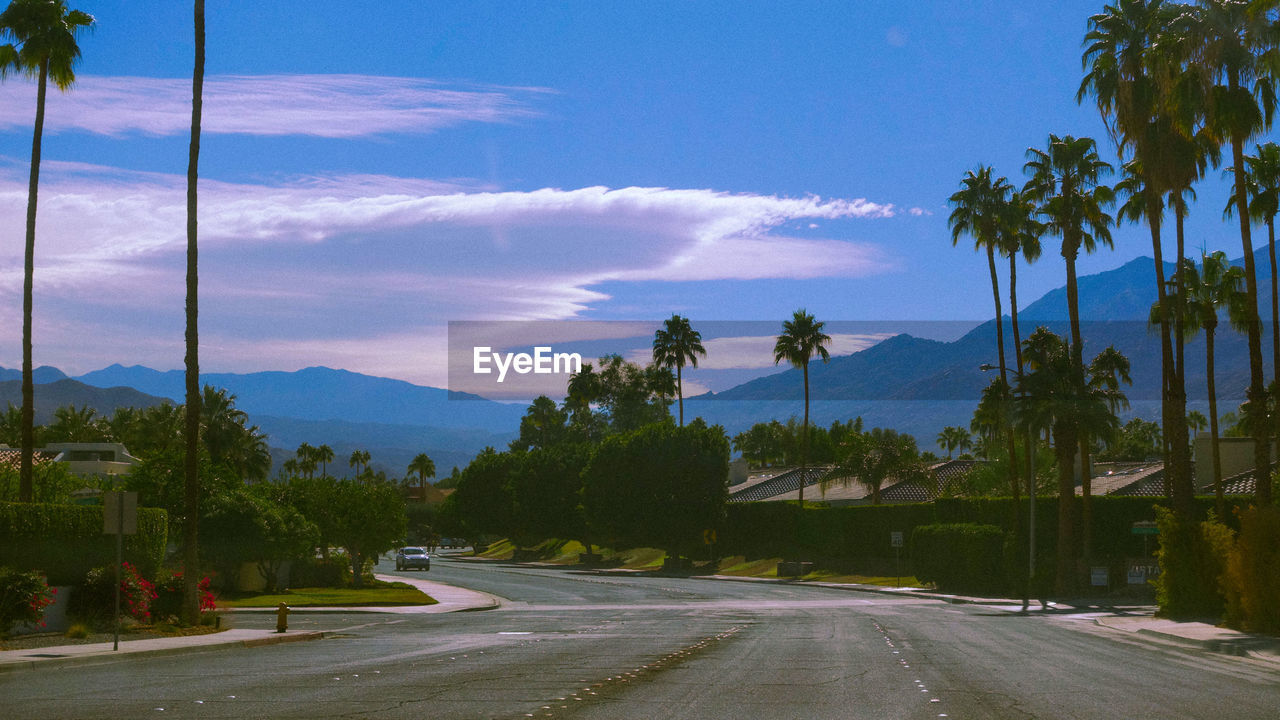 sky, road, tree, plant, transportation, cloud - sky, mountain, direction, street, nature, city, car, the way forward, no people, motor vehicle, sign, mode of transportation, tropical climate, outdoors, palm tree