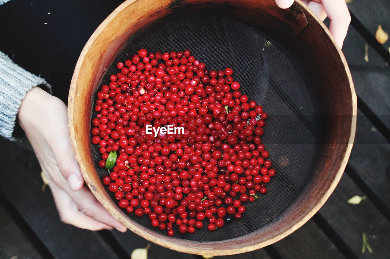 Cropped hand holding berries in container