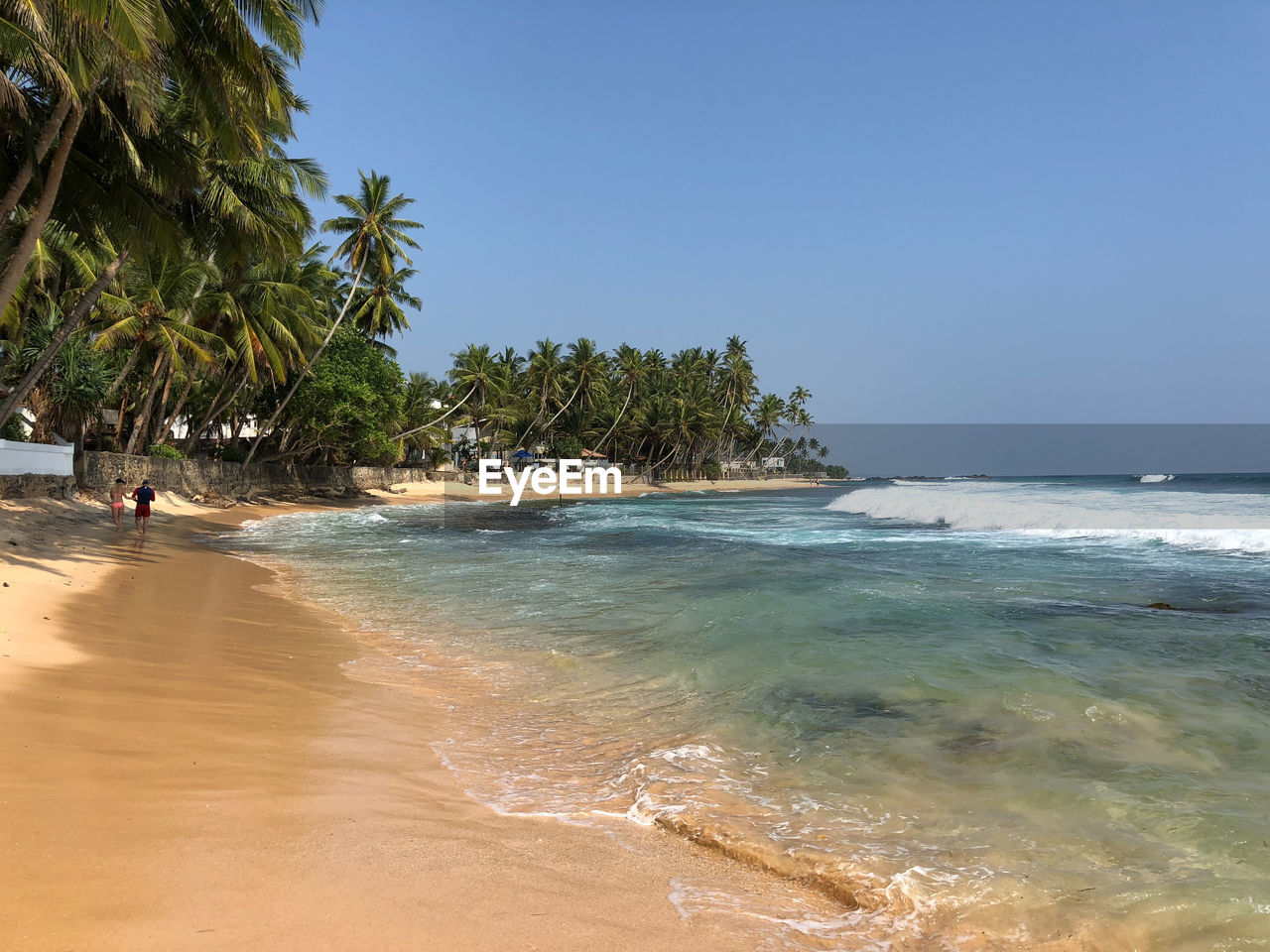water, sea, sky, beach, land, tree, beauty in nature, palm tree, plant, scenics - nature, tropical climate, nature, day, clear sky, horizon, horizon over water, wave, tranquil scene, tranquility, outdoors